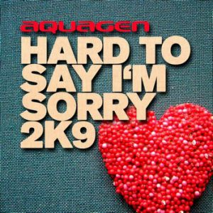 Hard To Say I'm Sorry 2K9 Album