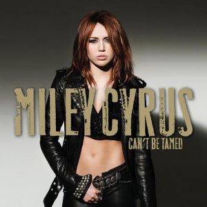 Can't Be Tamed Album