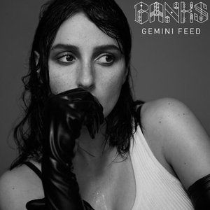 Gemini Feed Album